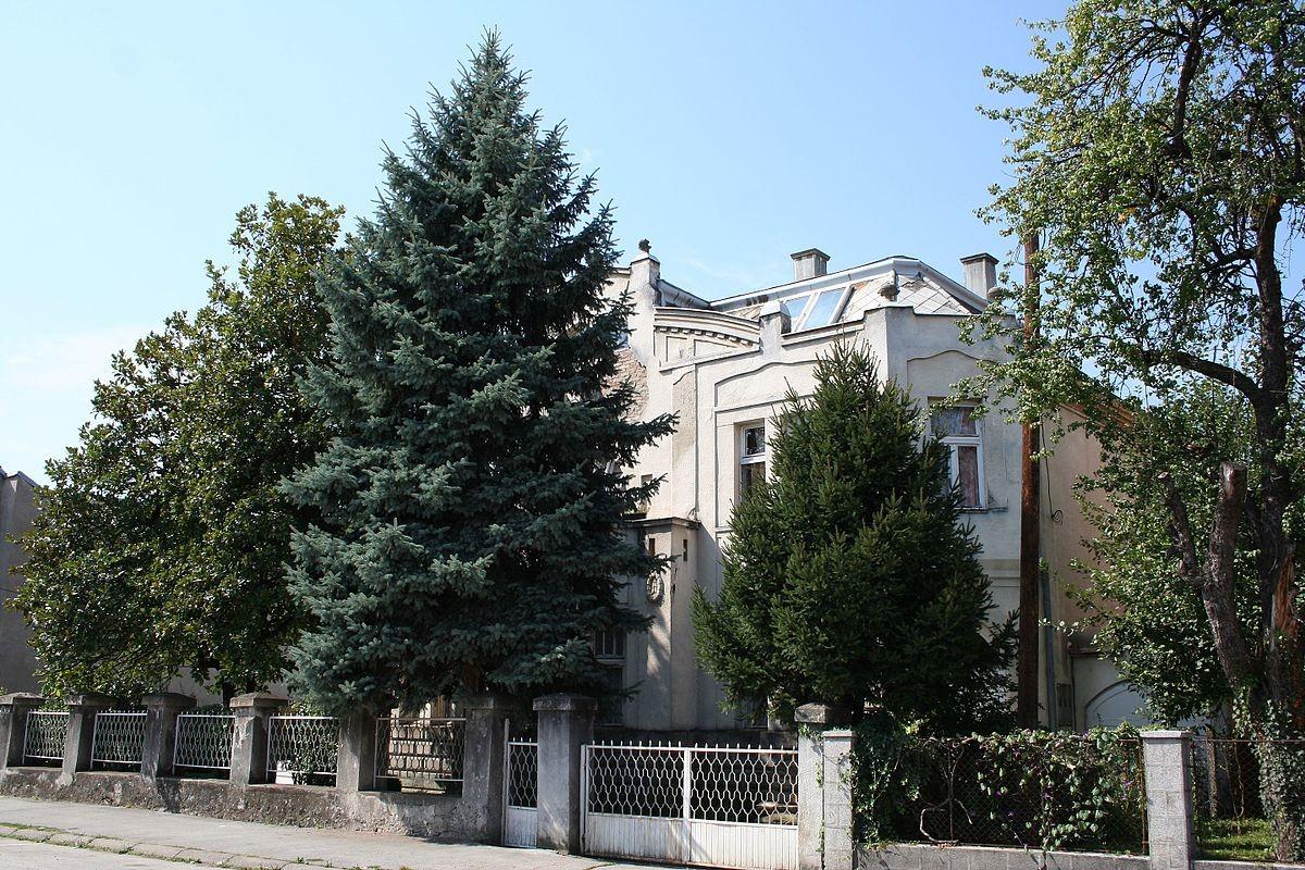 Vila Tucović
