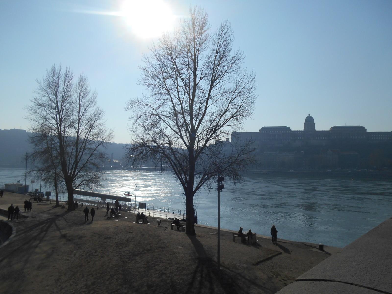 Pored reke