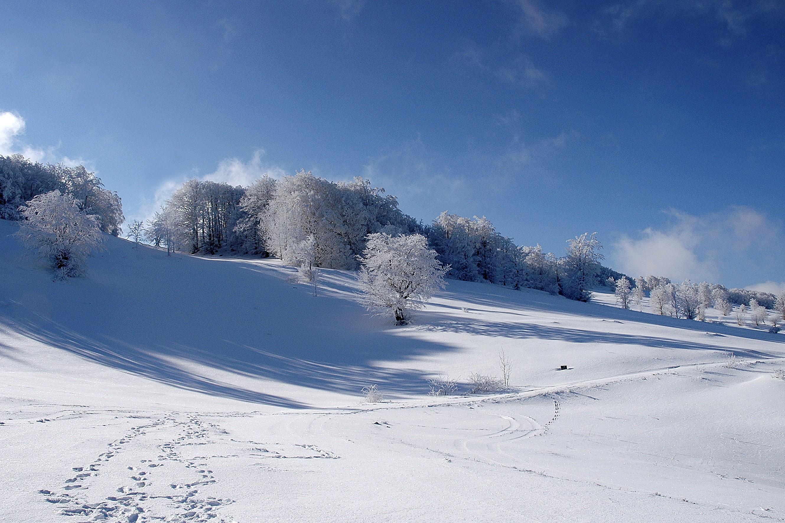 Zima, Povlen