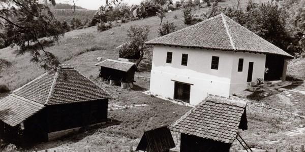 Struganik