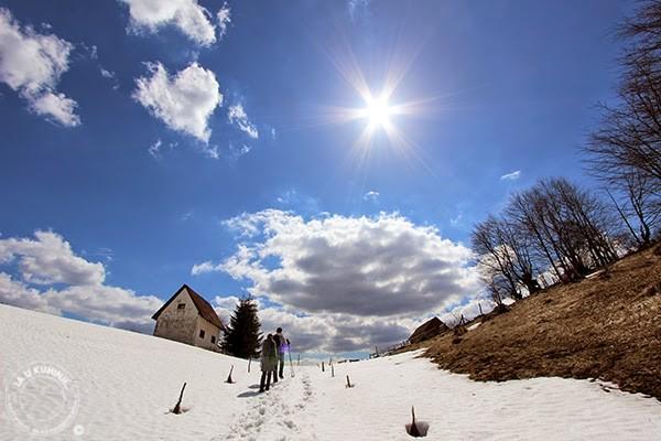 Snežni povlen
